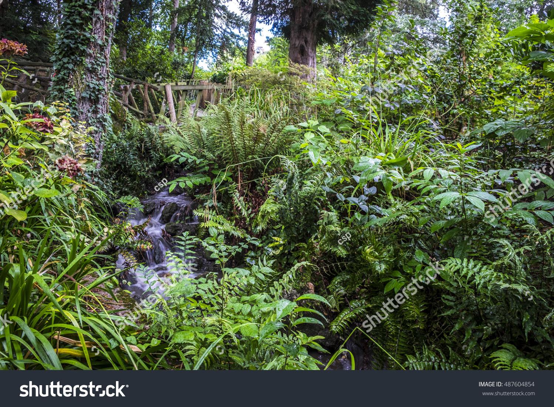 Vegetation Jardin Des Plantes Garden Public Stock Photo (Edit Now ...