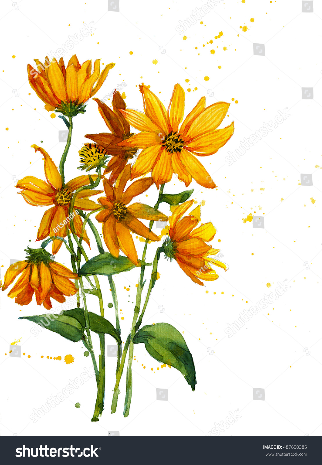 Freehand painted yellow flowers bouquet isolated stock illustration freehand painted yellow flowers bouquet isolated on white izmirmasajfo
