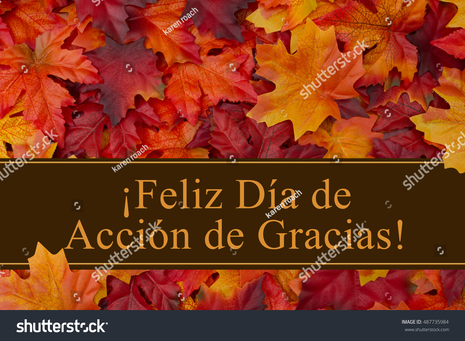 Happy Thanksgiving Greeting Spanish Some Fall Stock Photo Edit Now