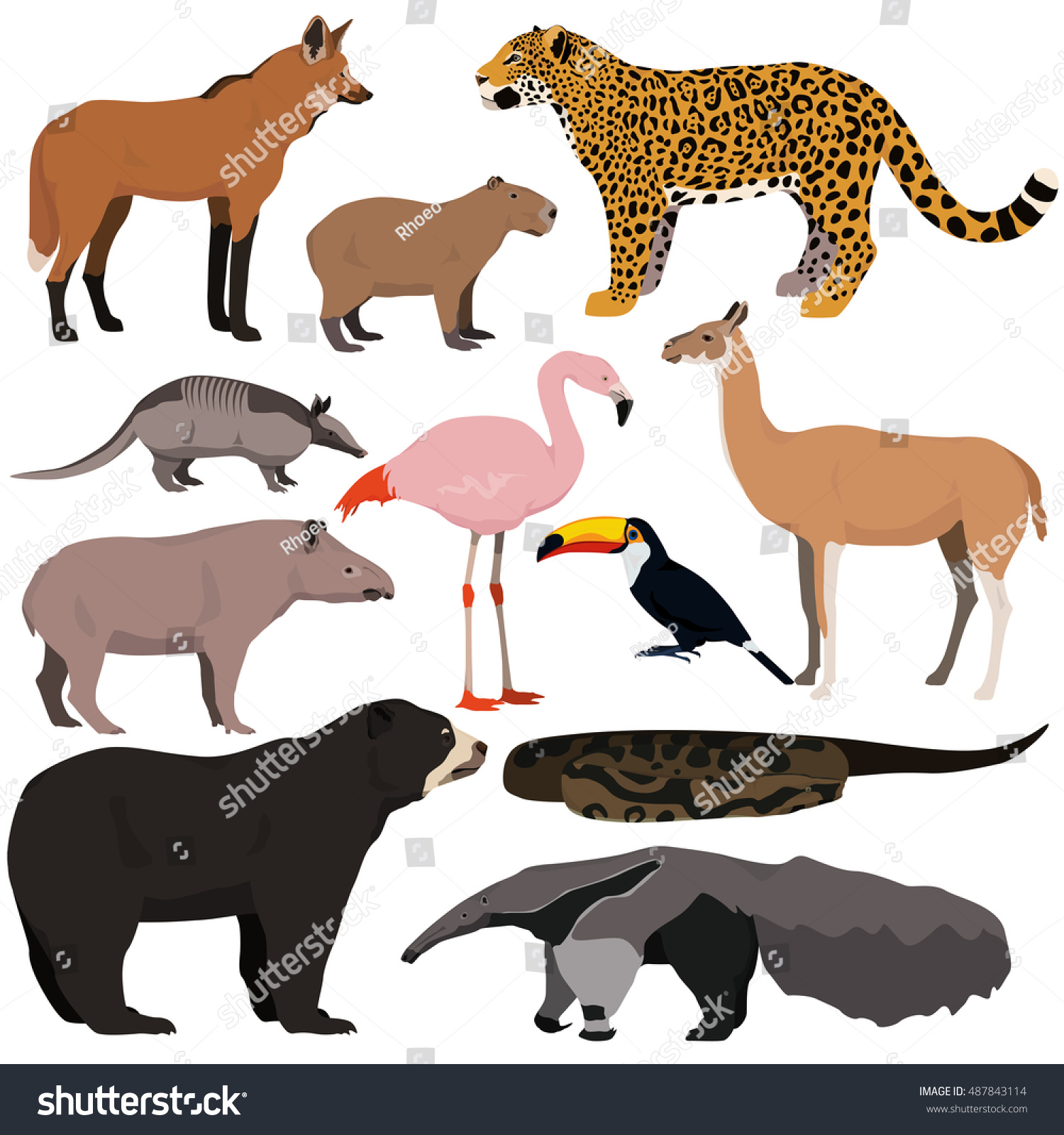 Vector Set Cartoon South American Animals Vector de stock487843114 ...