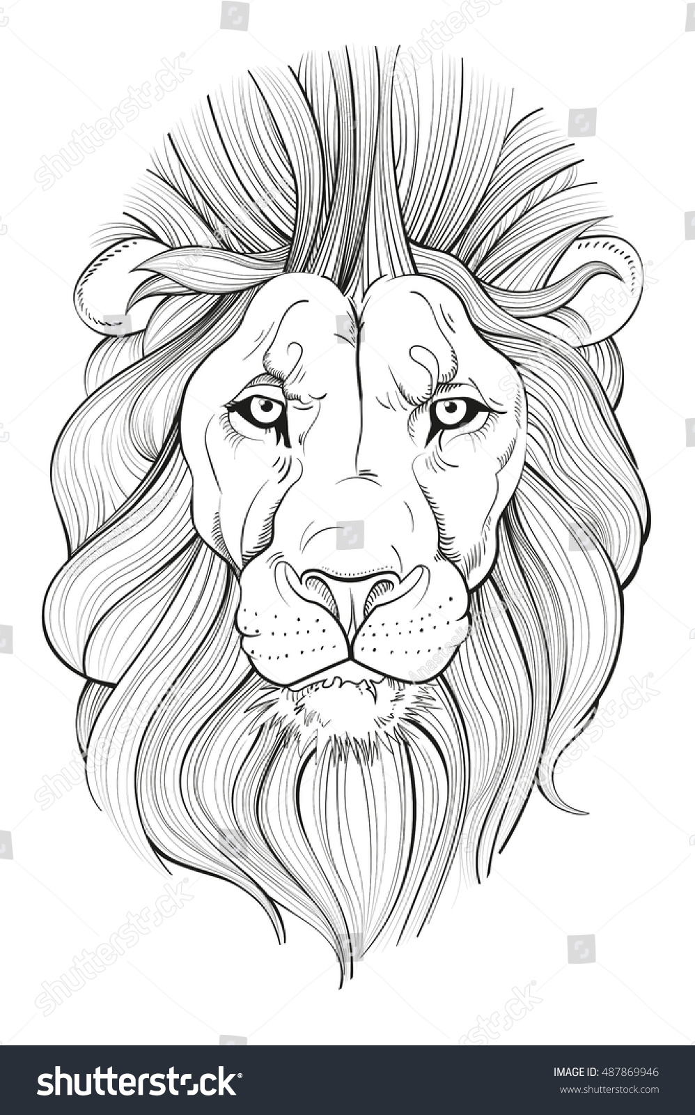 Drawing Skill Lion Face Outline Drawing Download 8 lion head outline free vectors. drawing skill blogger
