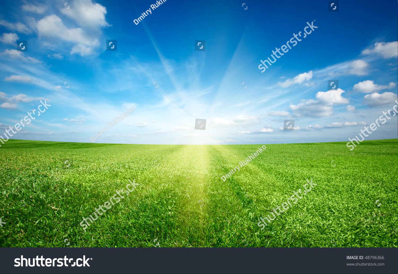 sunset sun field green fresh grass stock photo & image (royalty-free