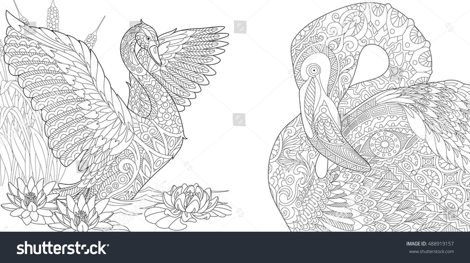 Water lily flower coloring pages - Stylized Two Beautiful Birds Swan Among Water Lilies Lotus Flowers And Flamingo