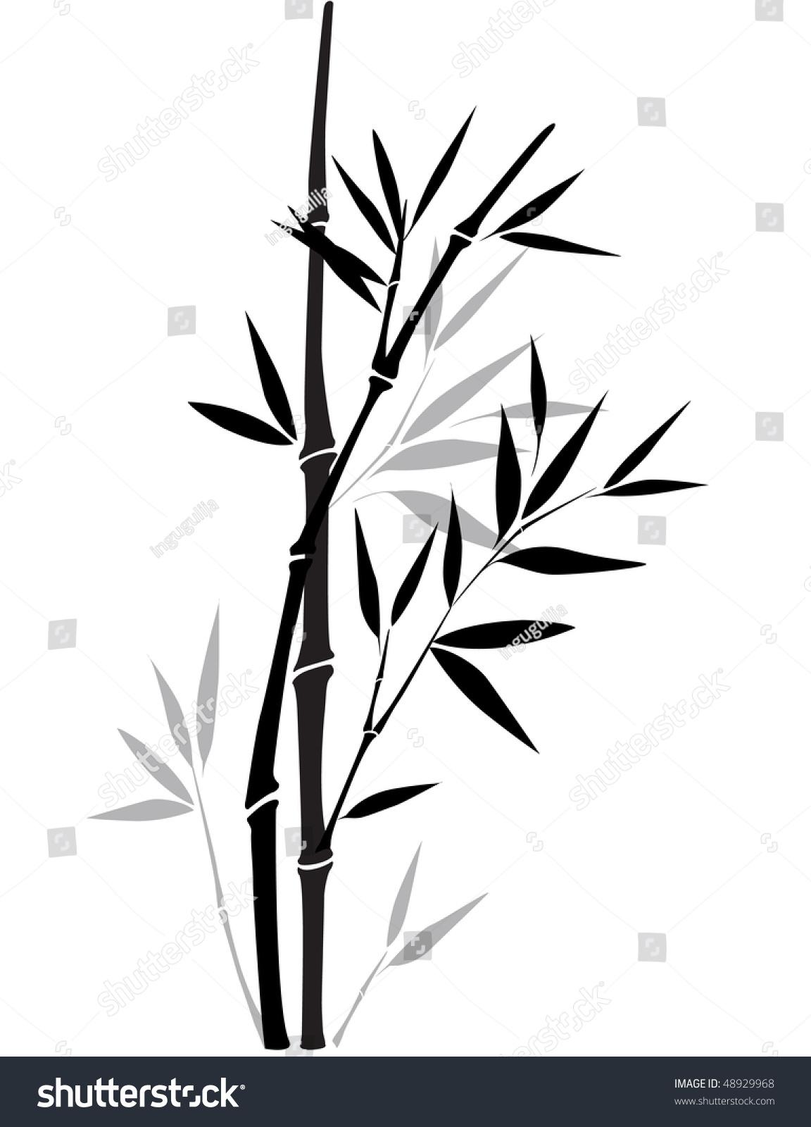 Black white bamboo stock vector 48929968 shutterstock - Black and wait ...