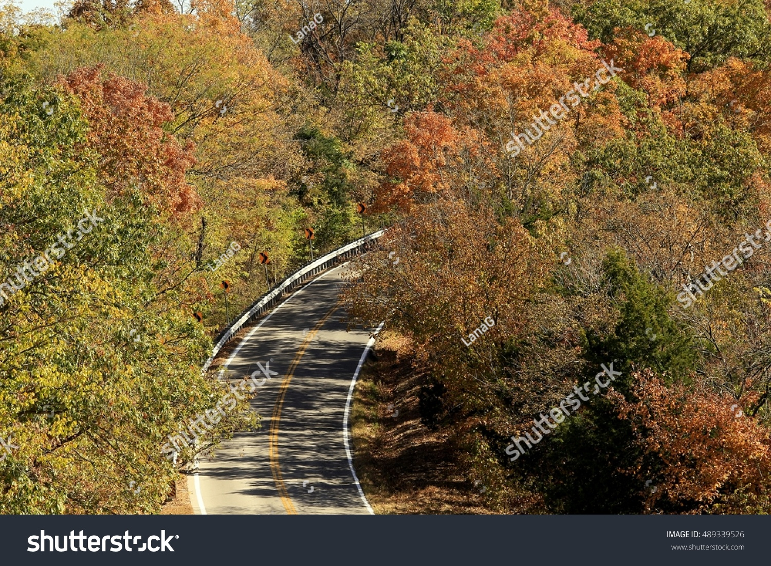 Royaltyfree 1 Hilly road between maple trees 489339526 Stock