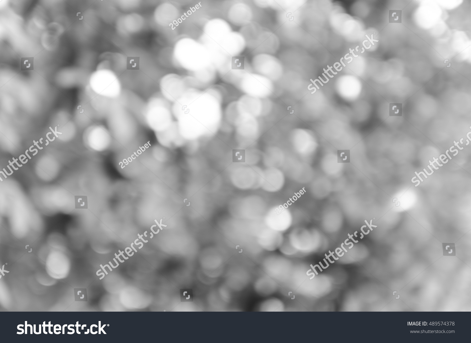Gray black white bokeh out of focus background from nature forest #489574378