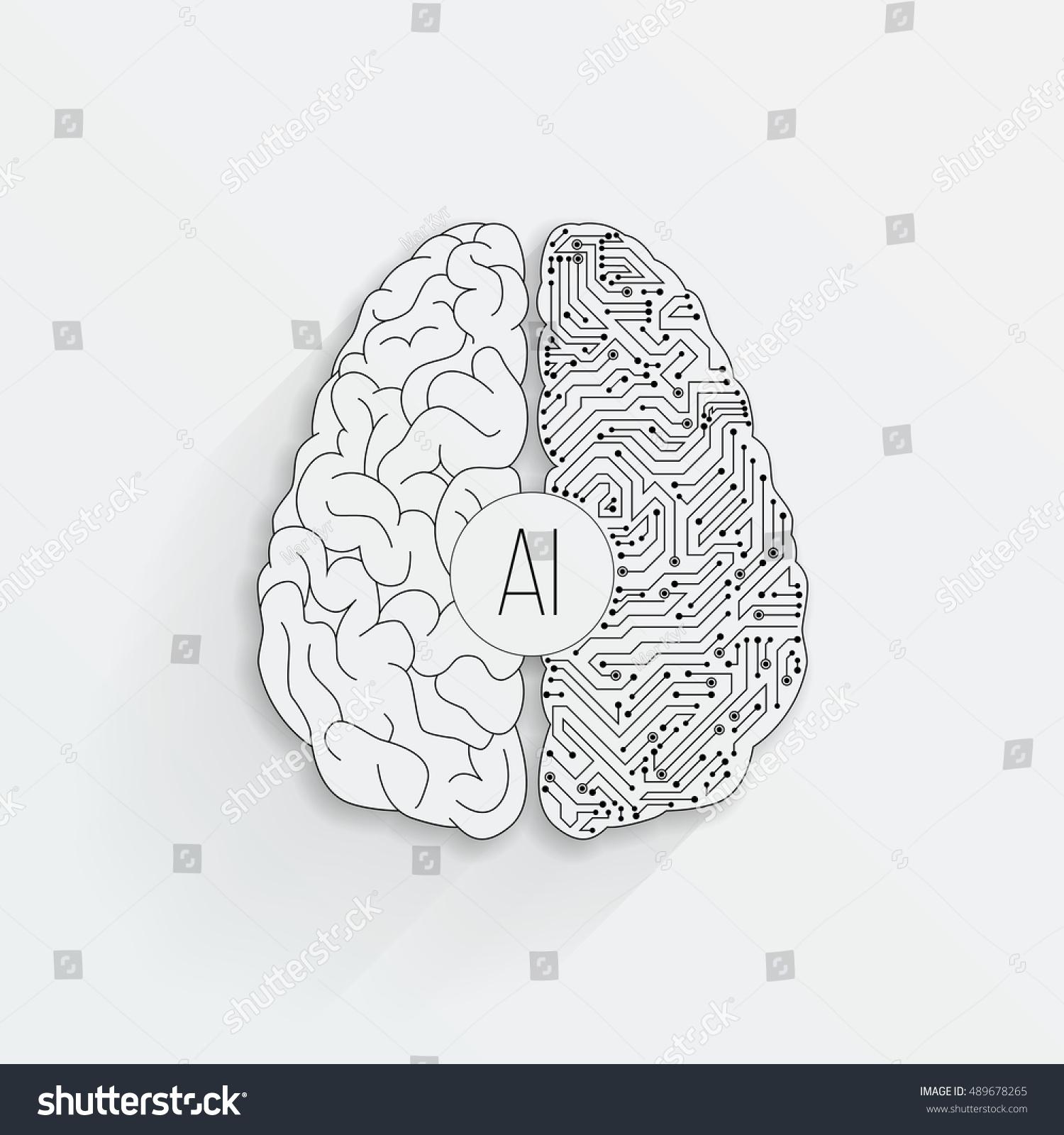 brain top view vector - photo #18