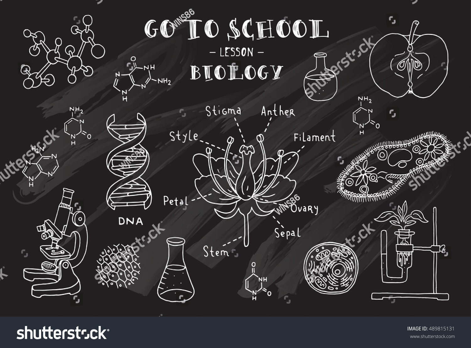 biology hand sketches on theme biology stock vector royalty free