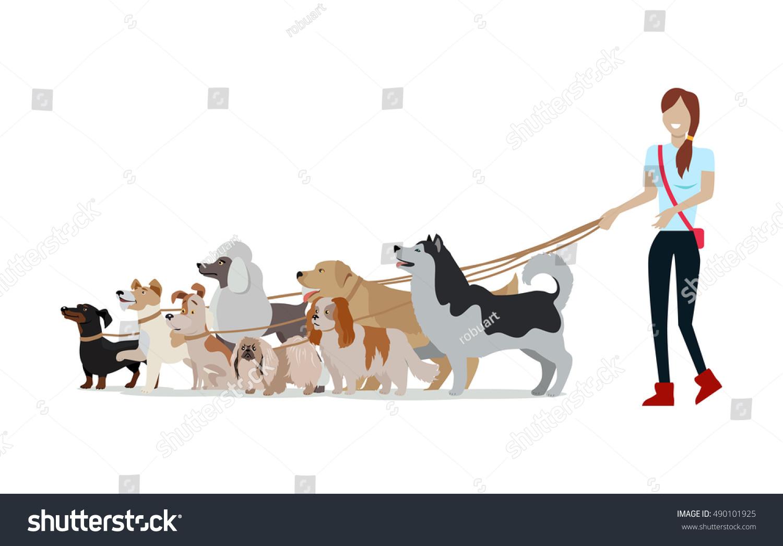dog walking banner w walks golden retriever jack dog walking banner w walks golden retriever jack russell terrier maremma sheepdog