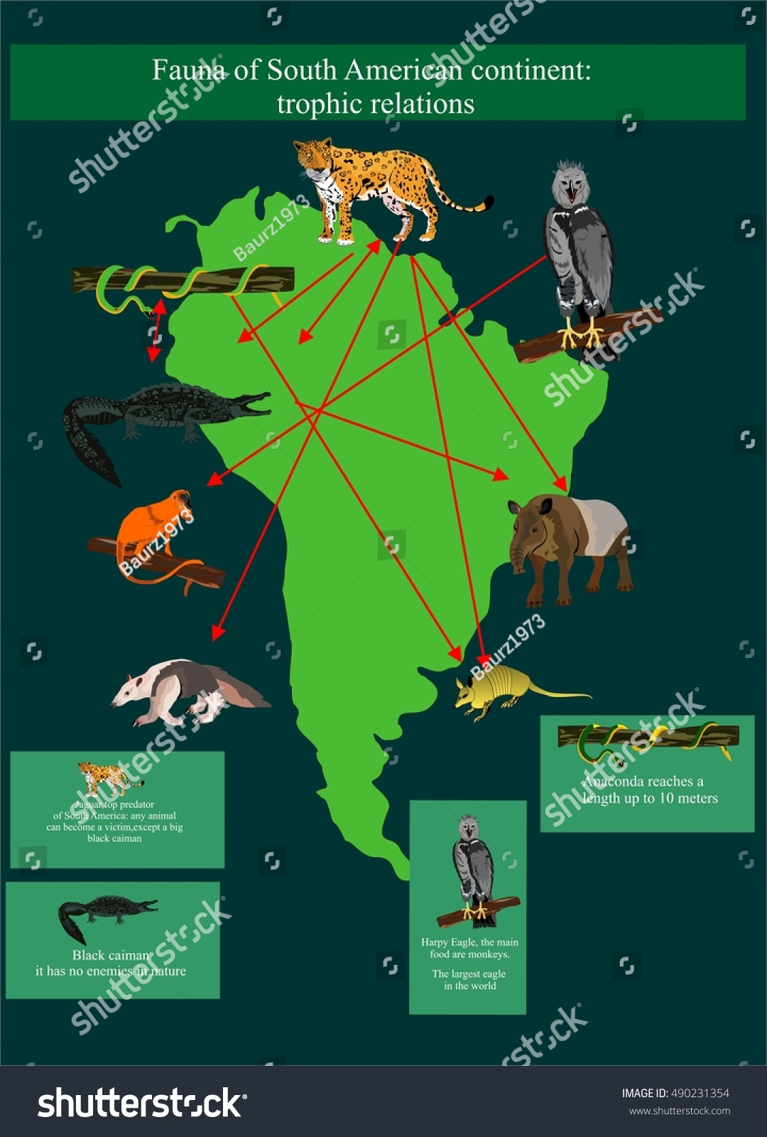 Map south america fauna biodiversity animals stock vector map of south america with its fauna biodiversity of animals wildlife vector illustration for gumiabroncs Images
