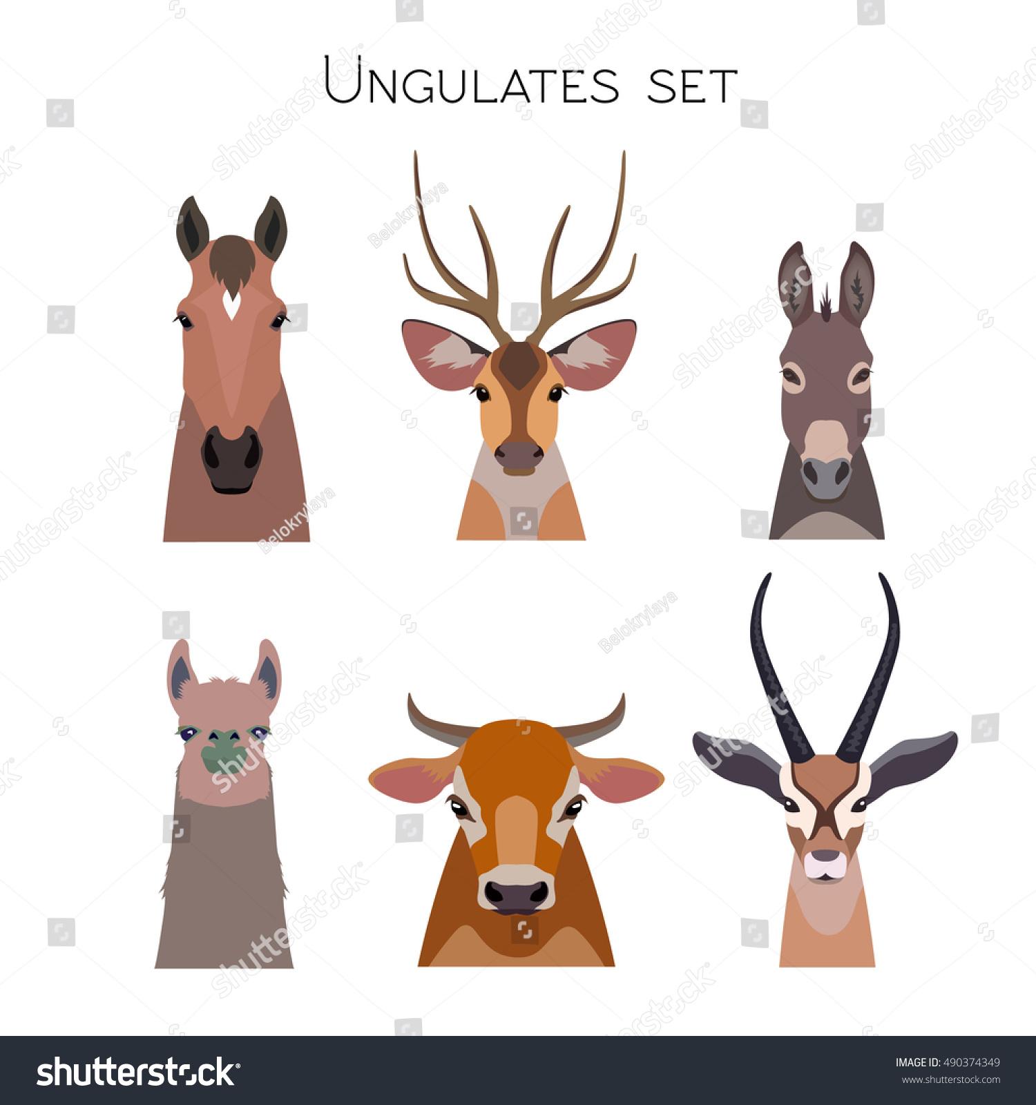 vector ungulates cloven hoofed animals set stock vector 490374349