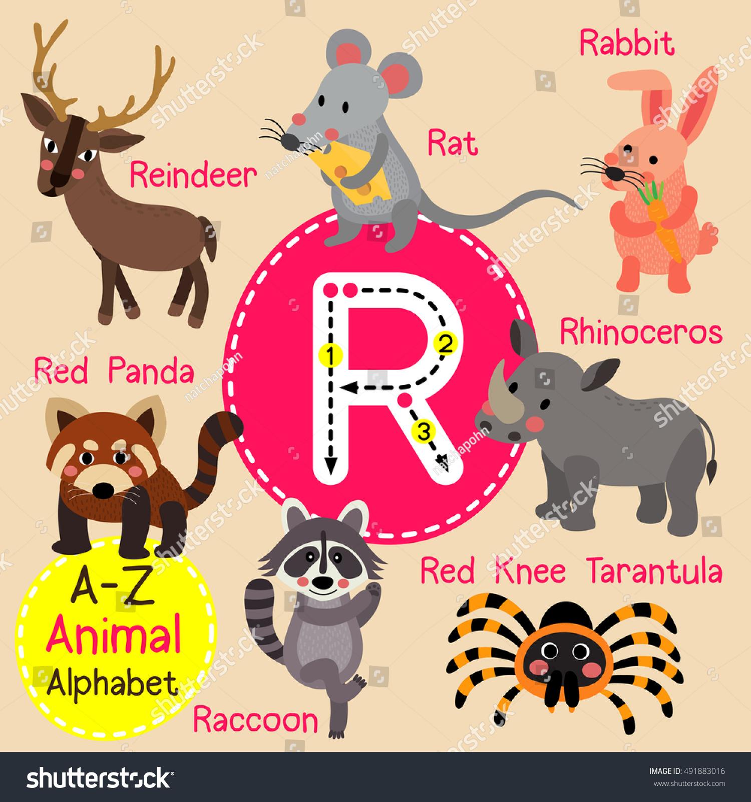 Cute Children Zoo Alphabet R Letter Stock Vektorgrafik Lizenzfrei