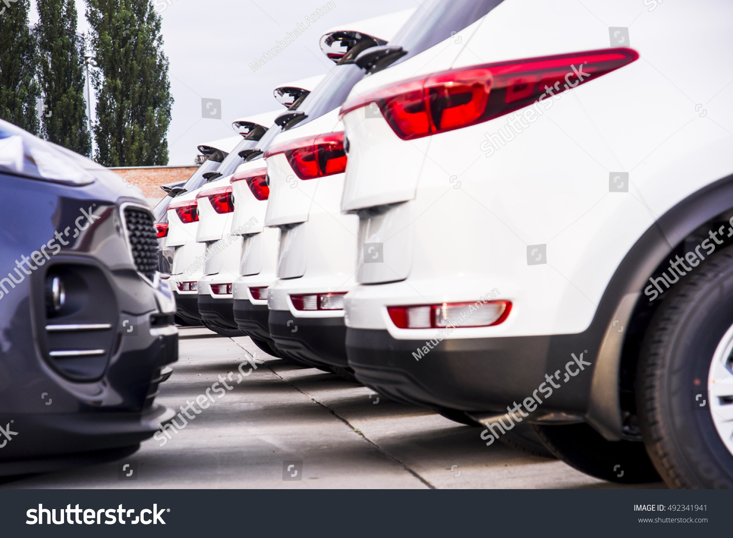 Row New Cars Parked Car Dealer Stock Photo 492341941 Shutterstock