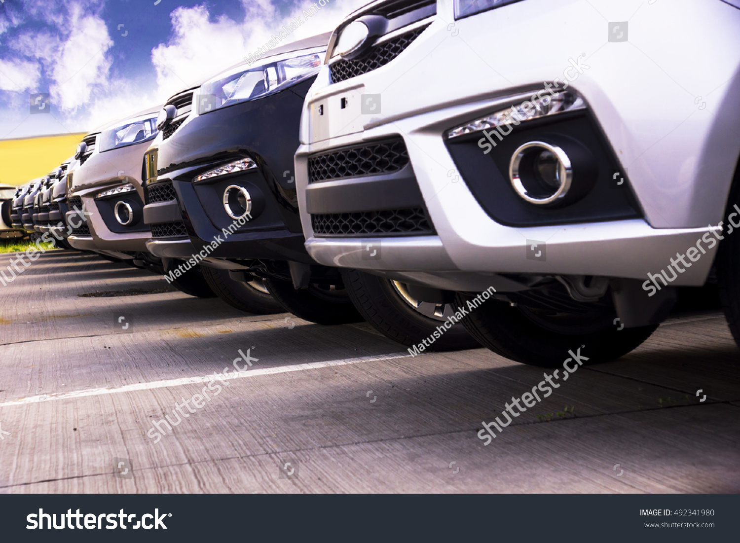 Row New Cars Parked Car Dealer Stock Photo 492341980 Shutterstock