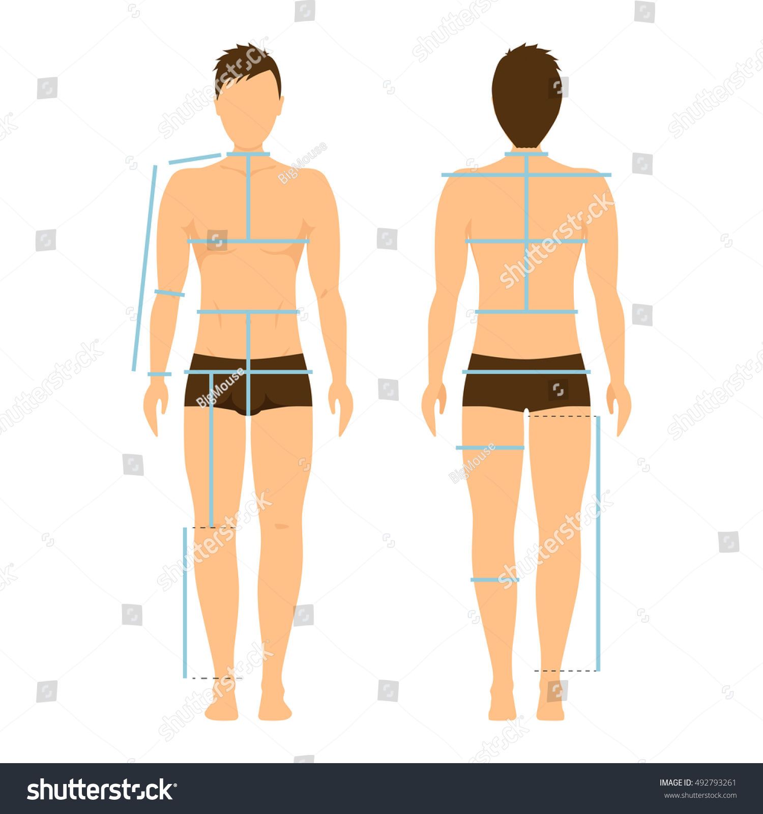 Male Body Size Diagram - Illustration Of Wiring Diagram •