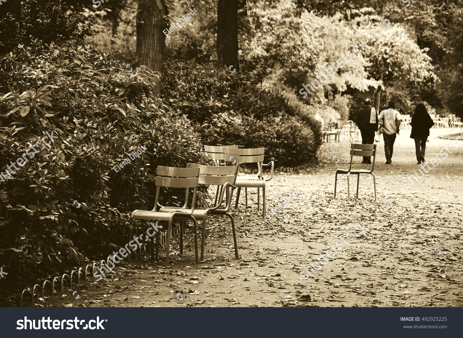 Luxembourg garden in autumn. Paris (France). Black and white. | EZ ...