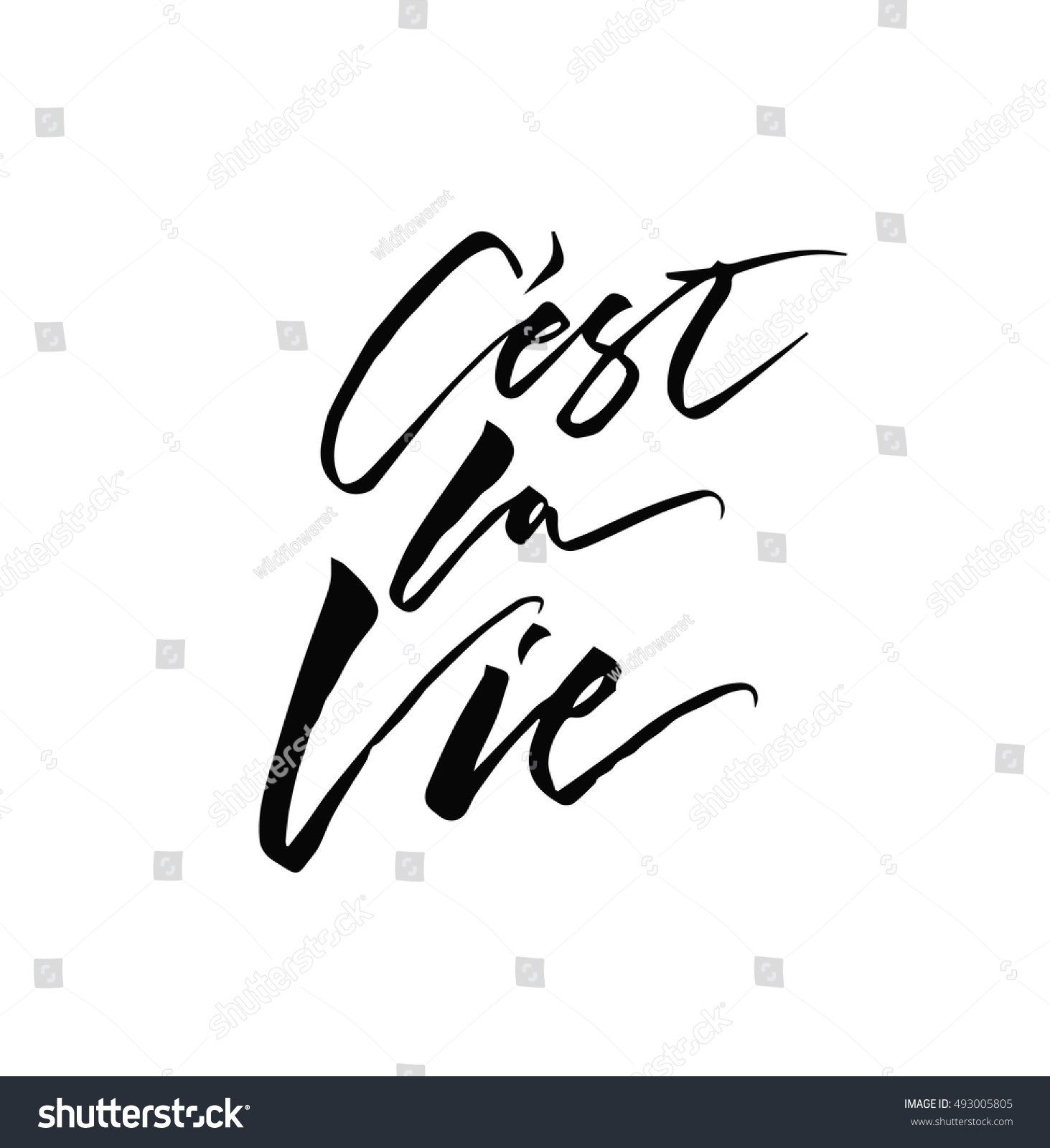 C Stock Quote French Quote Cest La Vie Meaning Stock Vector 493005805  Shutterstock