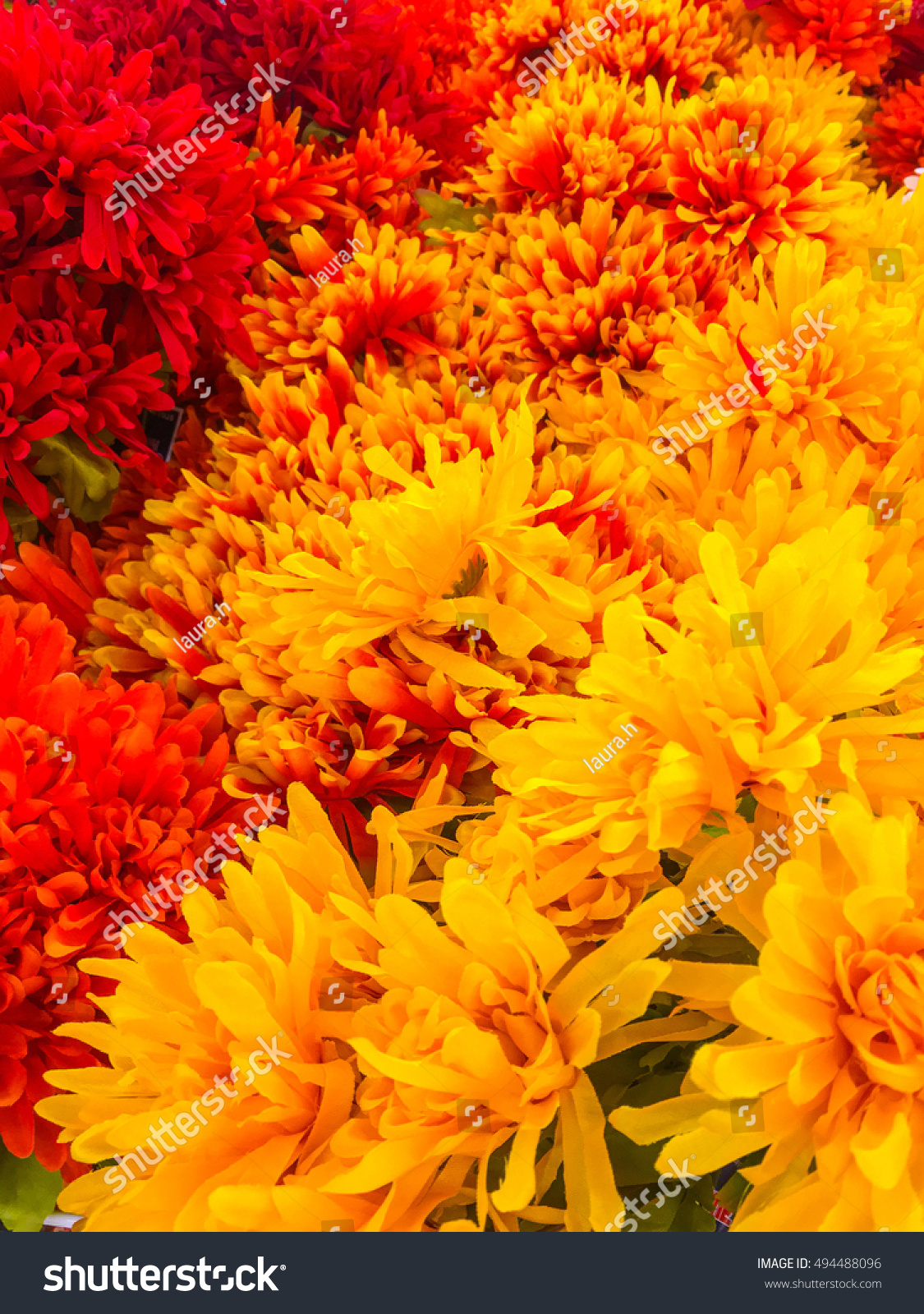 Colorful Fall Floral Background Orange Yellow Stock Image