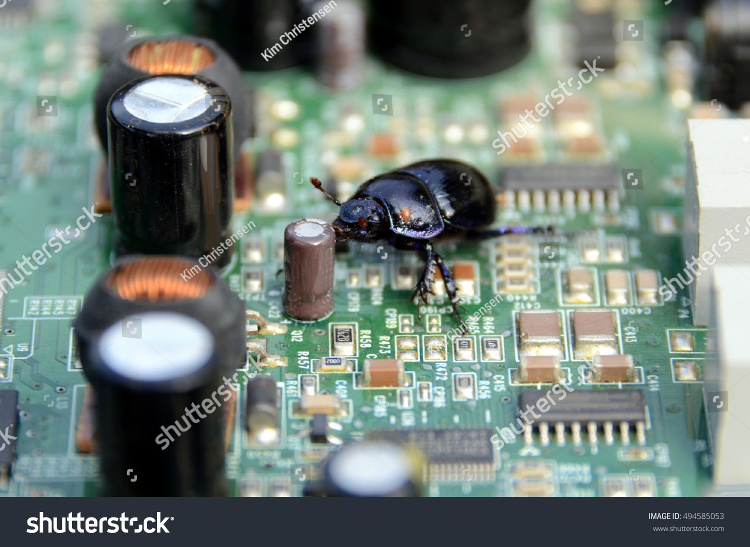 Bug Walks On Printed Circuit Board Stock Photo Edit Now 494585053 As Before We Can Copy The Onto A And Suggesting Have