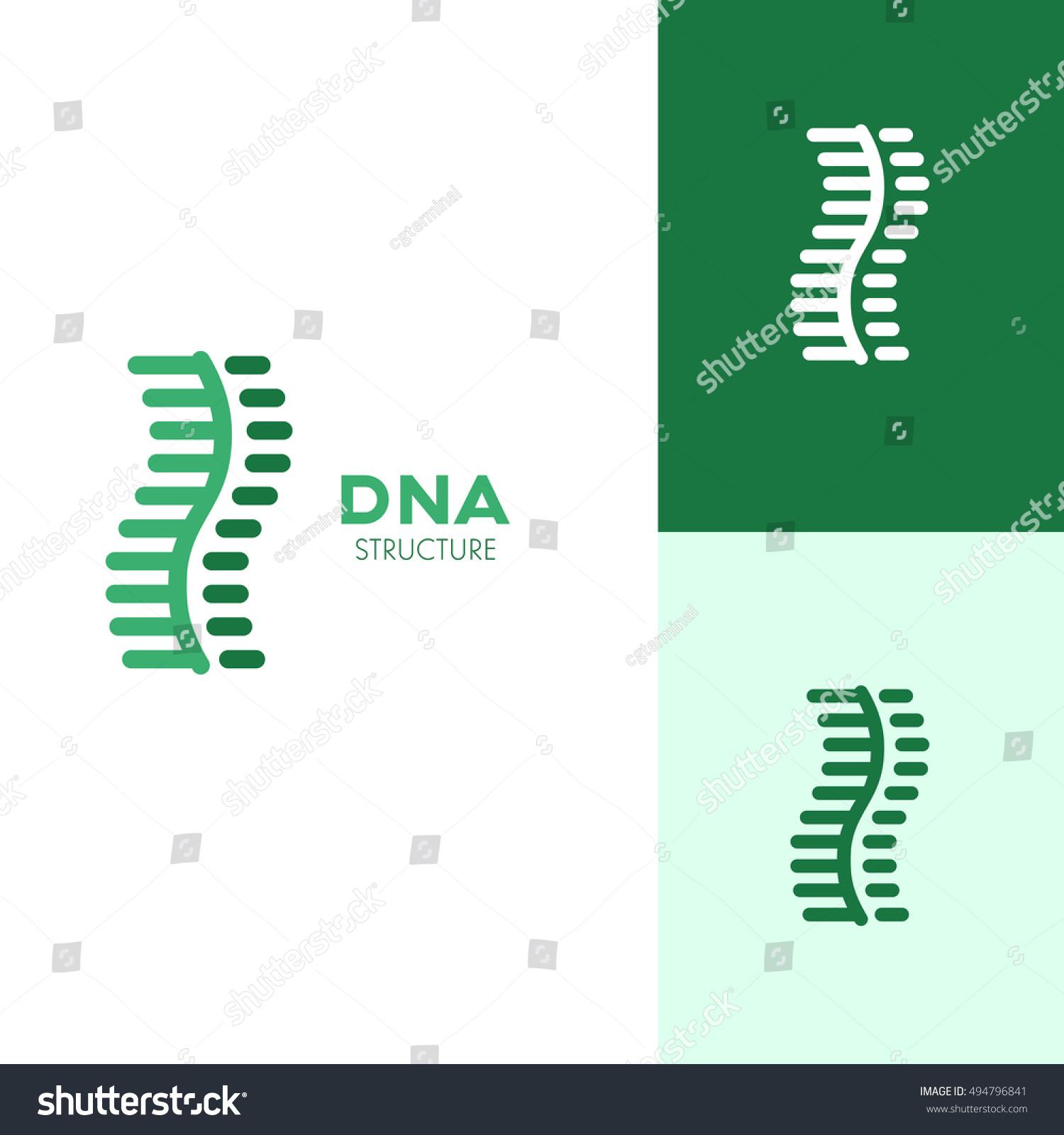 Structure Dna Icon Logo Template Medicine Stock Vector 494796841
