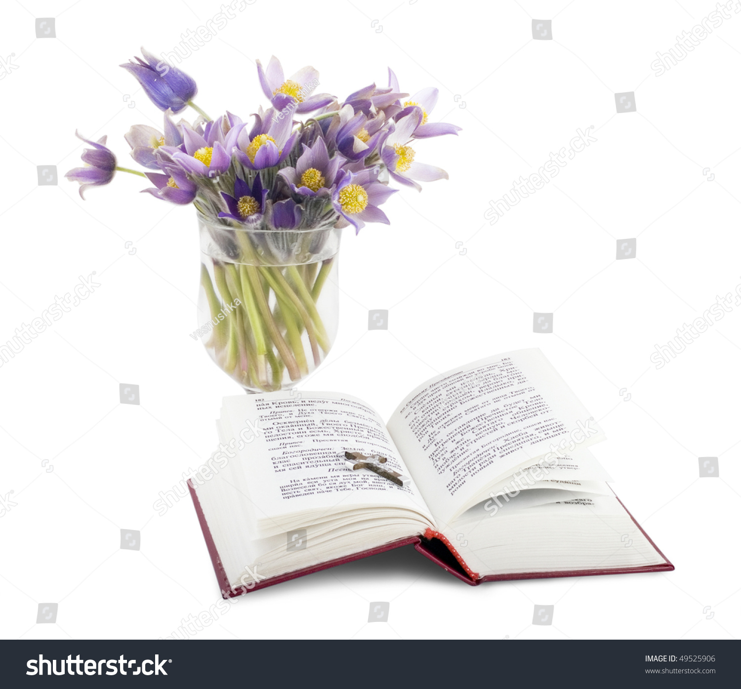 Bible Isolated Open Psalms Bunch Flowers Stock Photo 49525906 Shutterstock