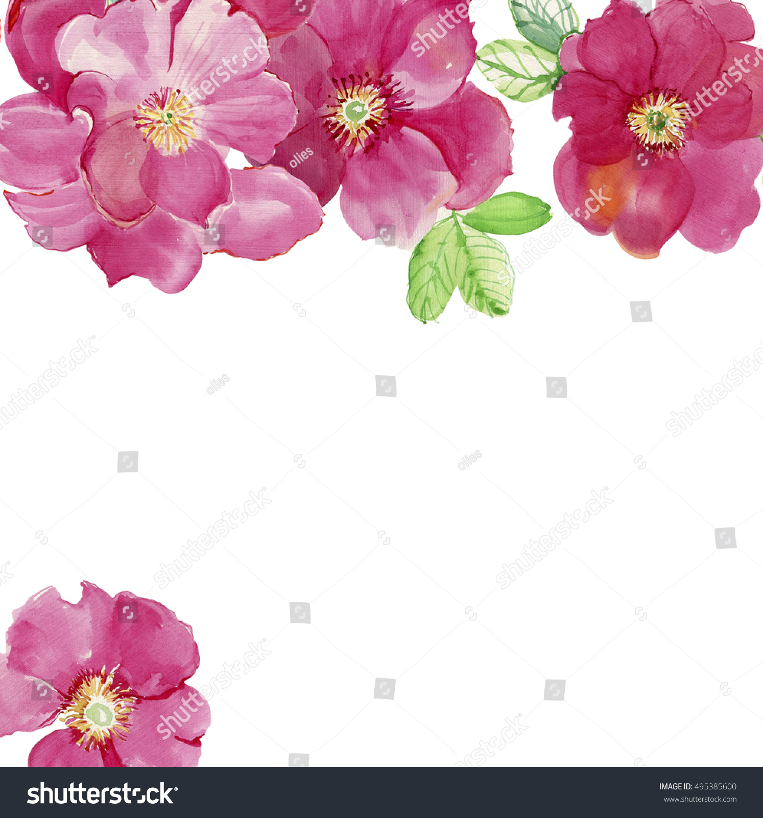 Pink Flowers Frame From Roses Wedding Drawings Greeting Cards