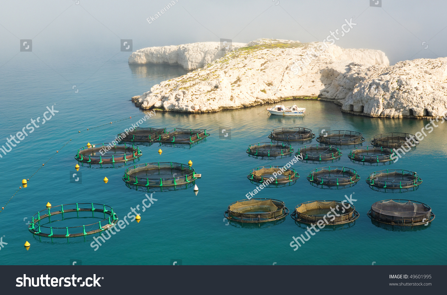 Fish farm on frioul island near stock photo 49601995 for Fish farms near me