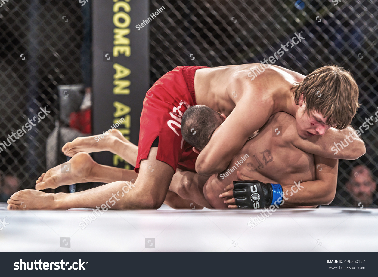 stockholm oct 8 2016 fight between stock photo 496260172 stockholm oct 8 2016 fight between saeed ganji vs patrik pitela at superior
