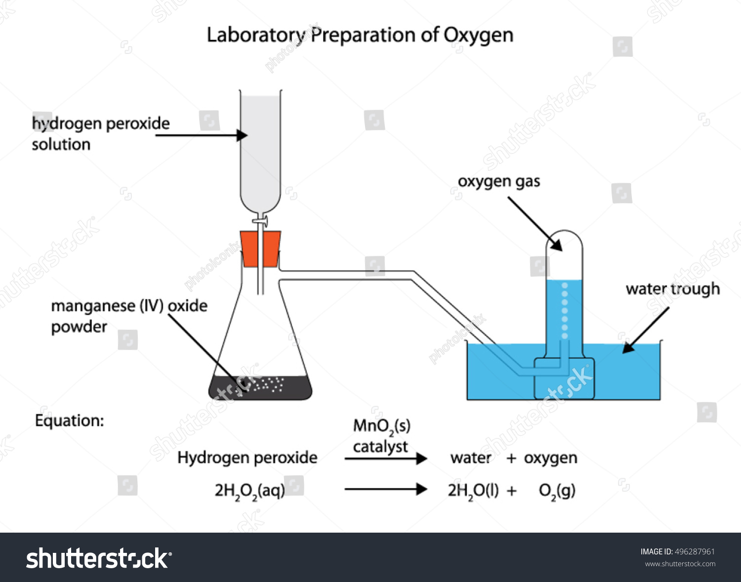 (b) Rates of reaction – TutorMyself Chemistry |Manganese Dioxide Catalyst