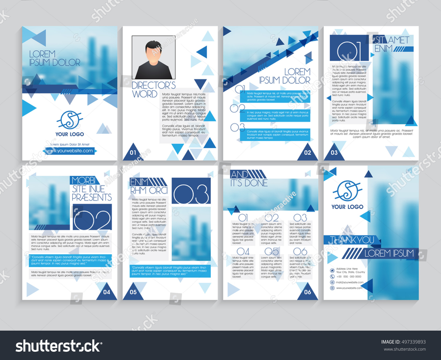 Set Professional Brochure Template Cover Design Stock Vector