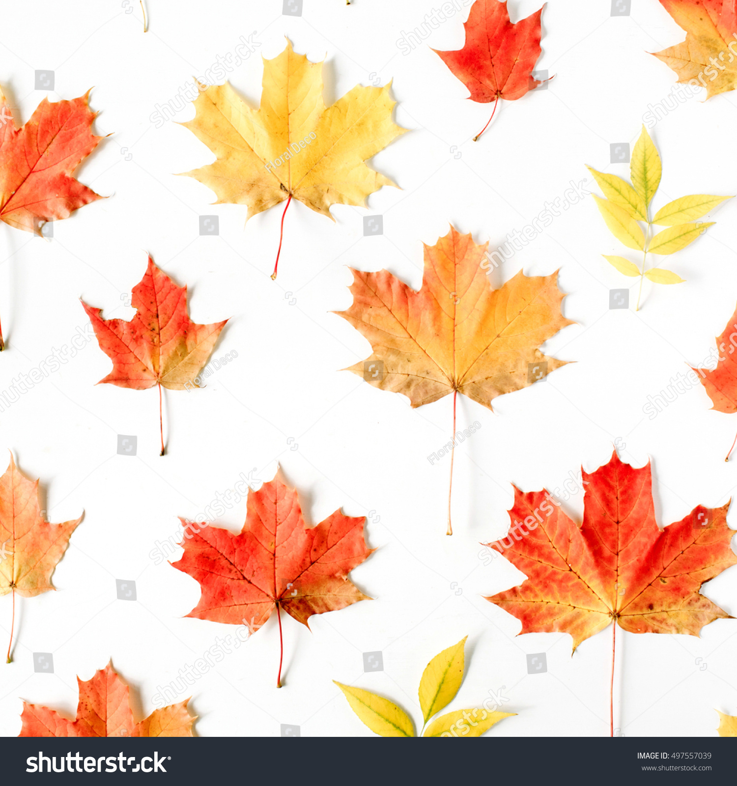 red leaves wallpaper pattern - photo #10
