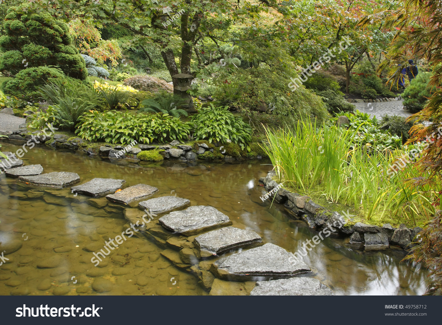Traditional japanese gardens - Traditional Japanese Garden A Stream And A Decorative Path From Stones
