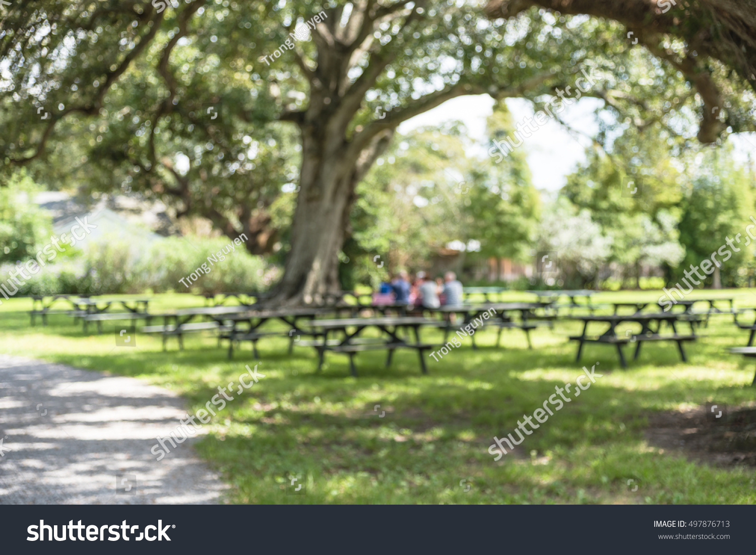 Blurred image of picnic tables, green… Stock Photo 497876713