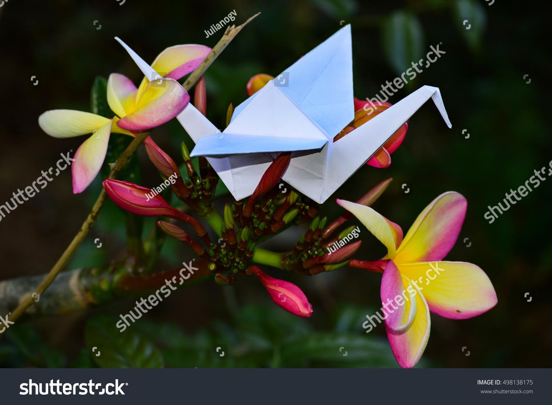 Origami hummingbird on garden full spring stock photo royalty free origami hummingbird on garden in full spring with beautiful flowers izmirmasajfo