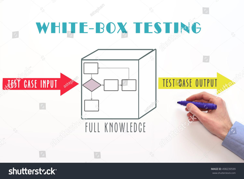 White box penetration testing something