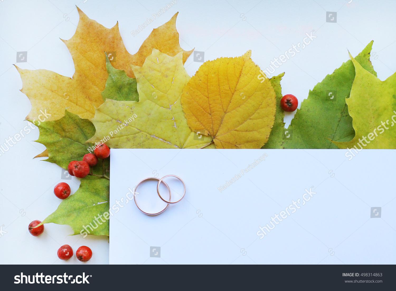 Creative Seasonal Autumn Background Close Maple Stock Photo (100 ...