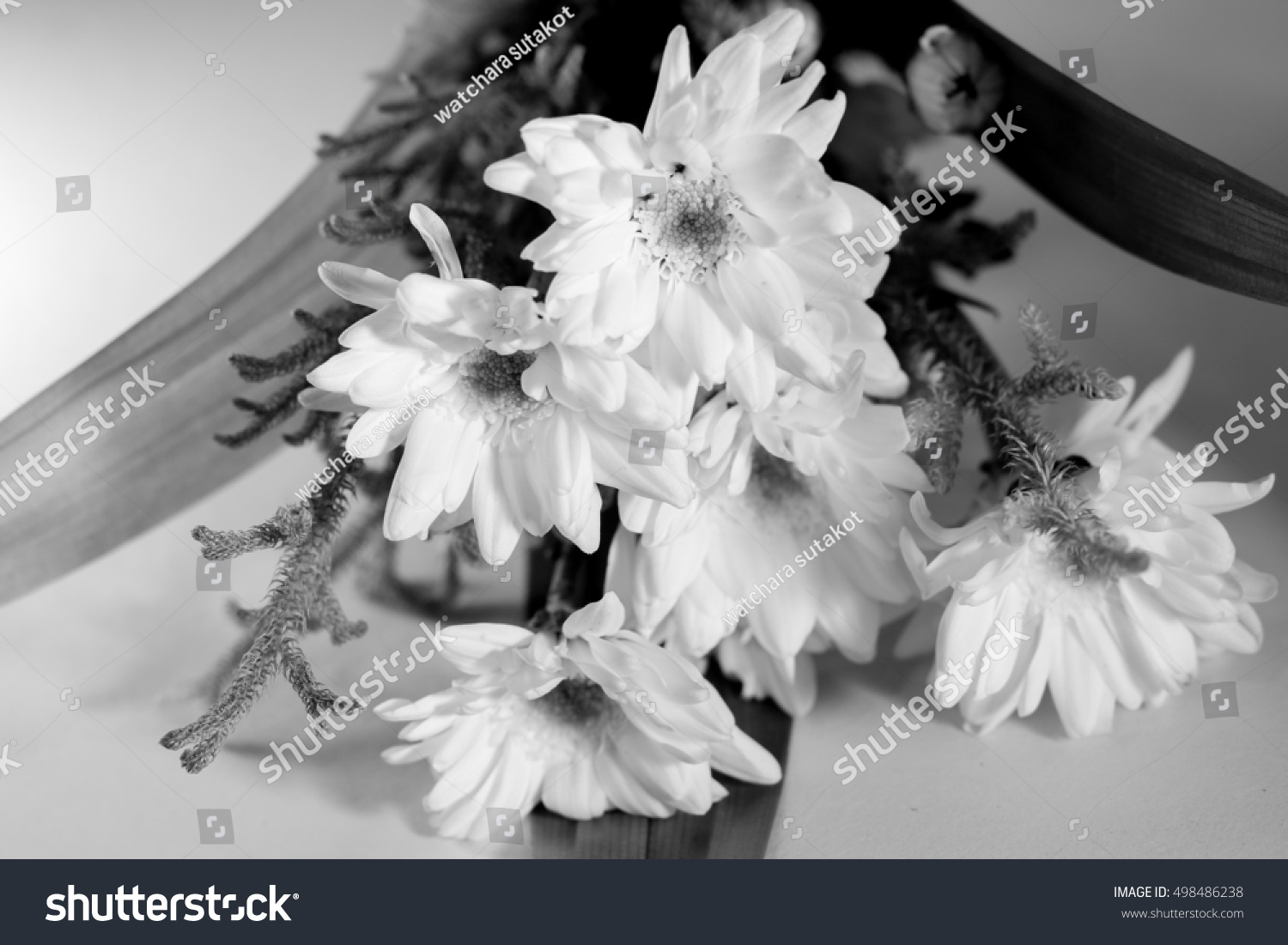 White Tropical Flower Black And White Ez Canvas