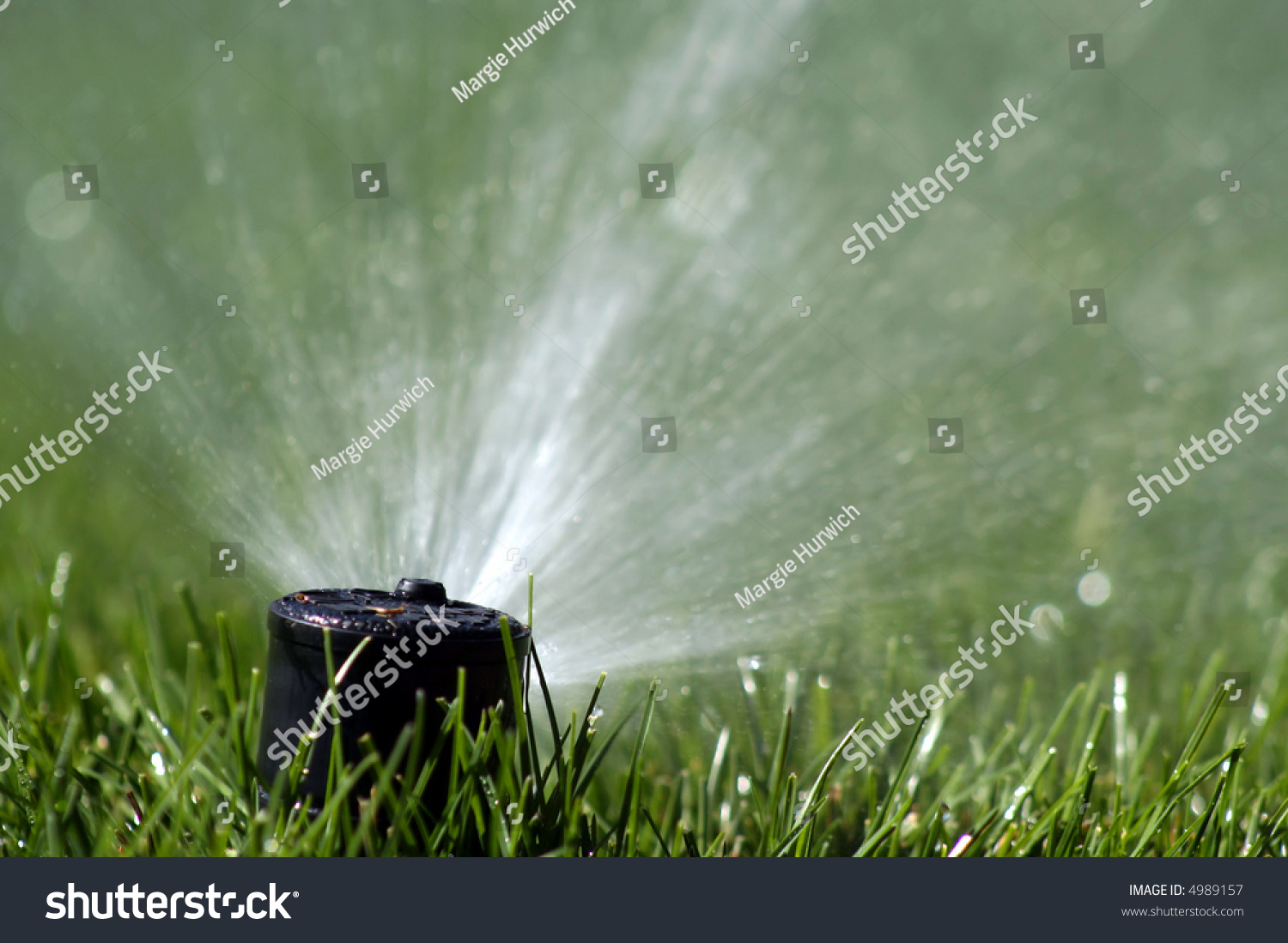Close Lawn Sprinkler Copy Space Stock Photo Edit Now 4989157