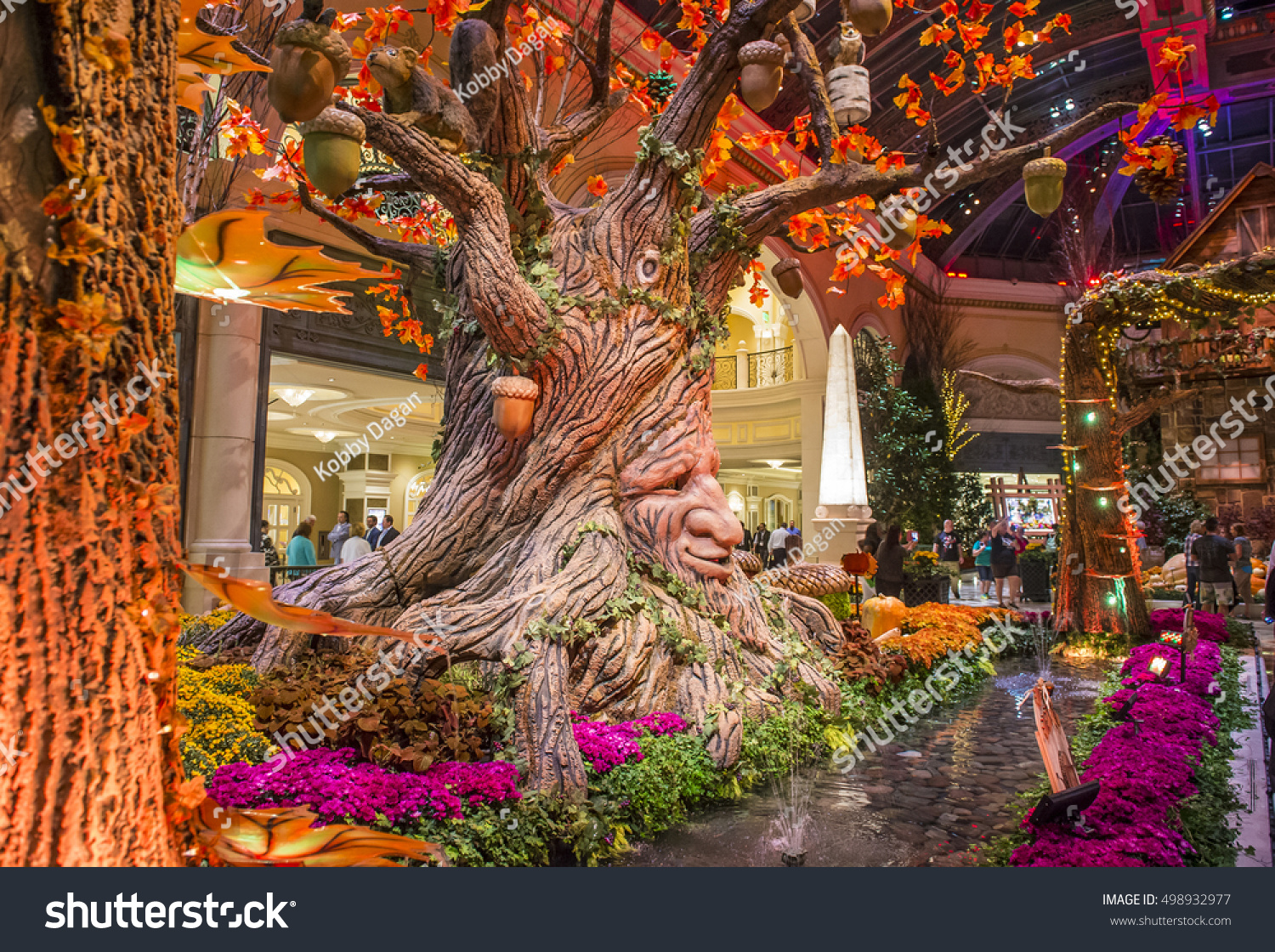 LAS VEGAS OCT 05 Fall Season Stock Photo (Safe to Use) 498932977 ...
