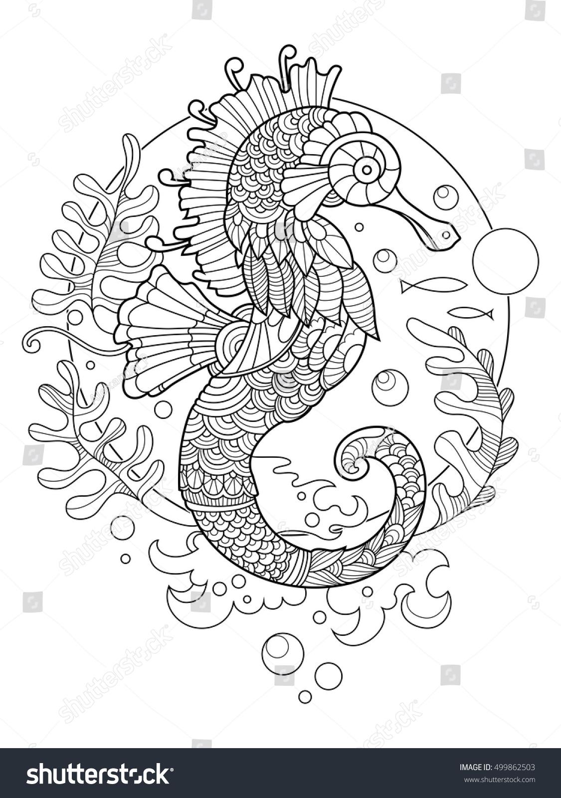 sea horse coloring book adults vector stock vector 499862503