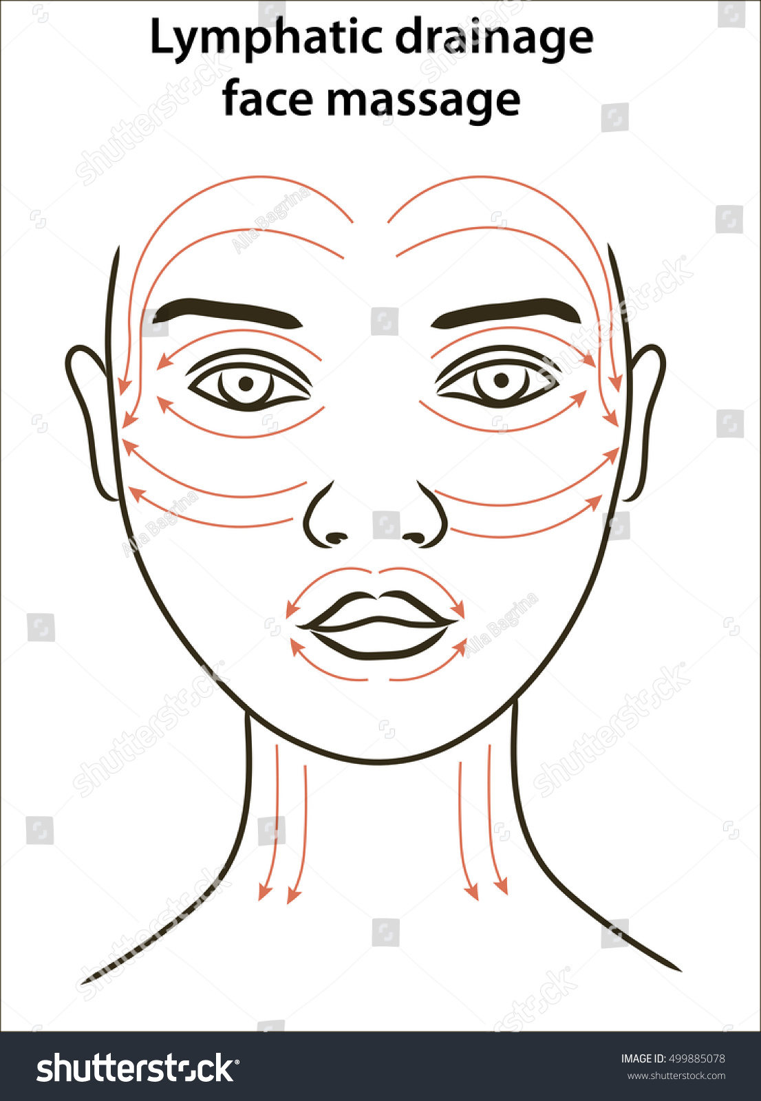 [Image: stock-vector-face-massage-lines-young-wo...885078.jpg]