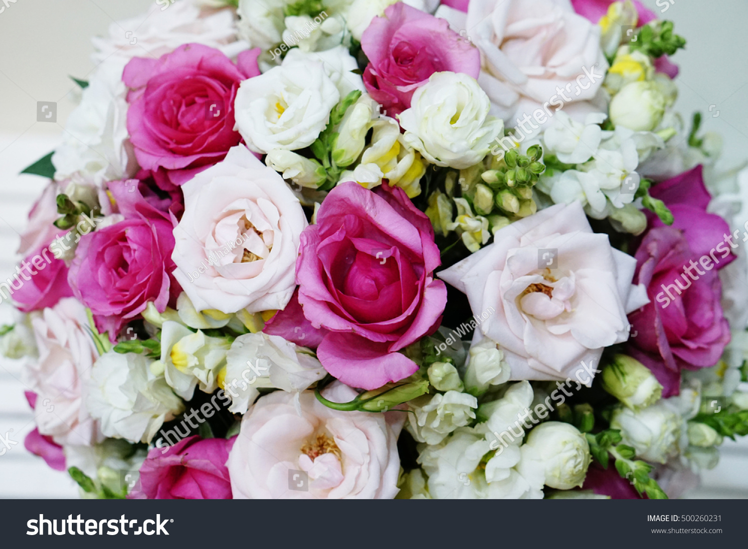 Bunch Pink Roses White Roses Flower Stock Photo Edit Now 500260231