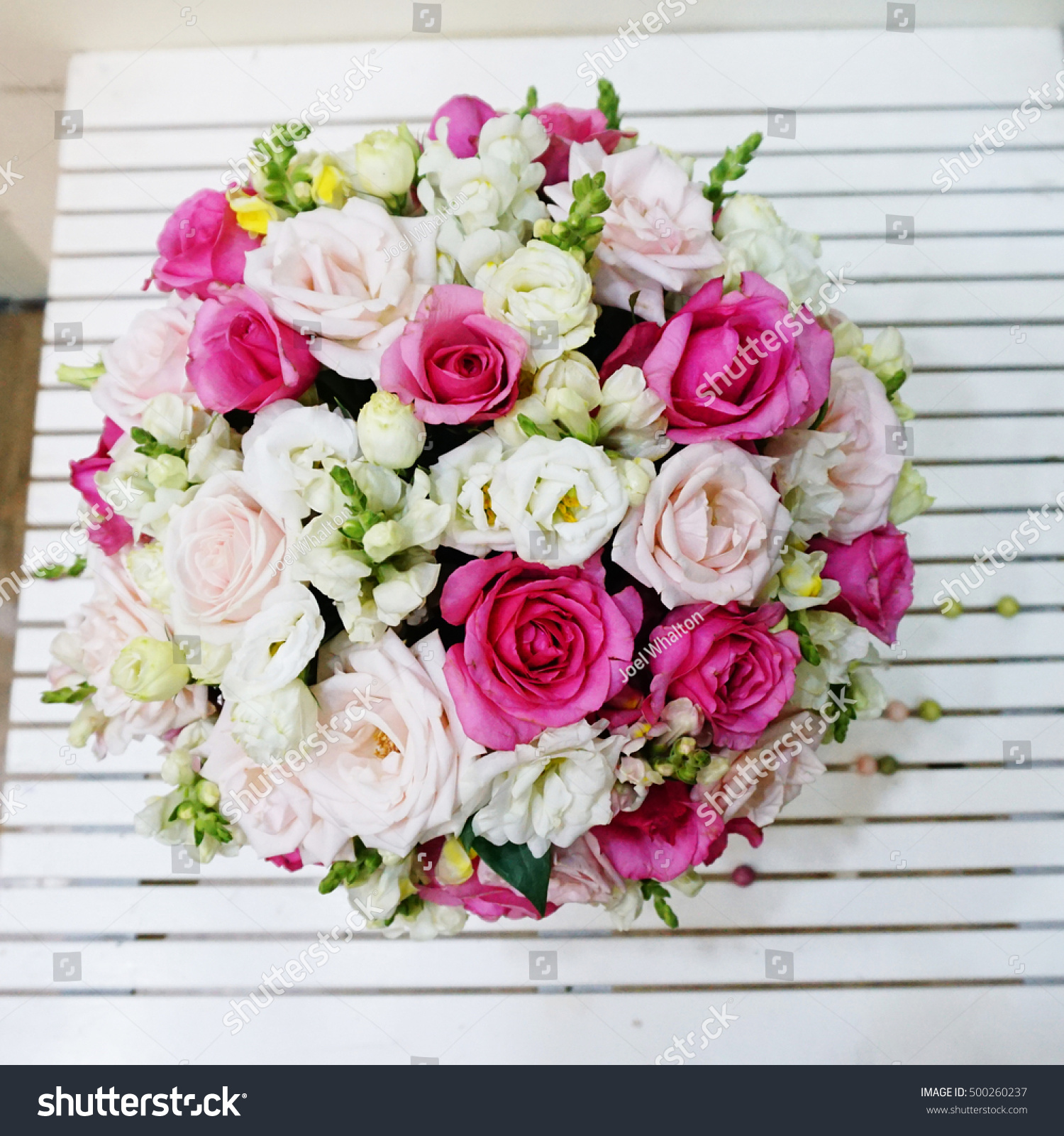 Bunch Pink Roses White Roses Flower Stock Photo Edit Now 500260237