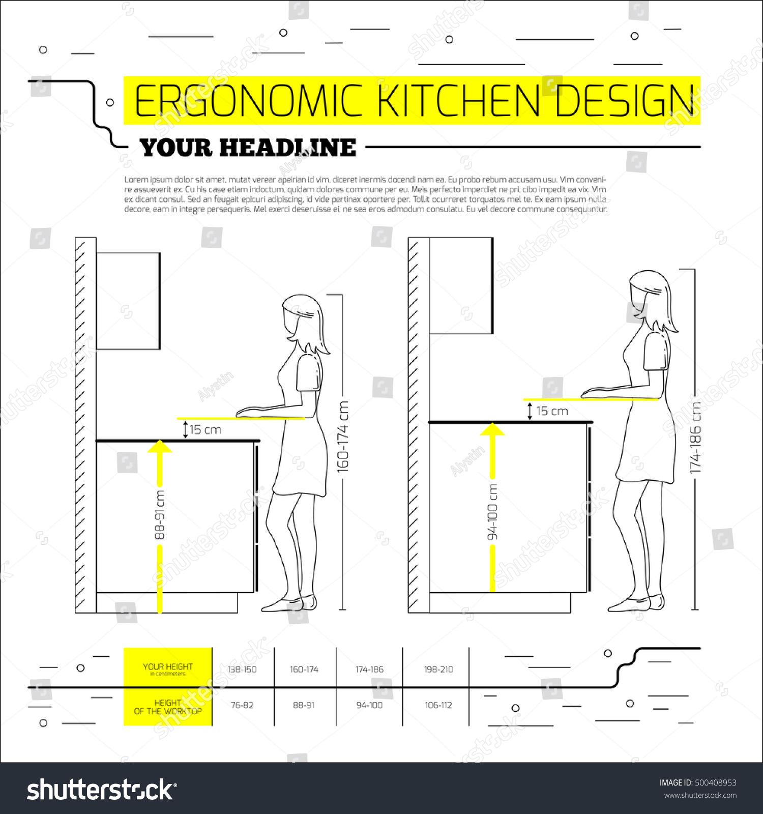 Ergonomic Kitchen Design Ergonomics Kitchen Design Vector Illustration Line Stock Vector