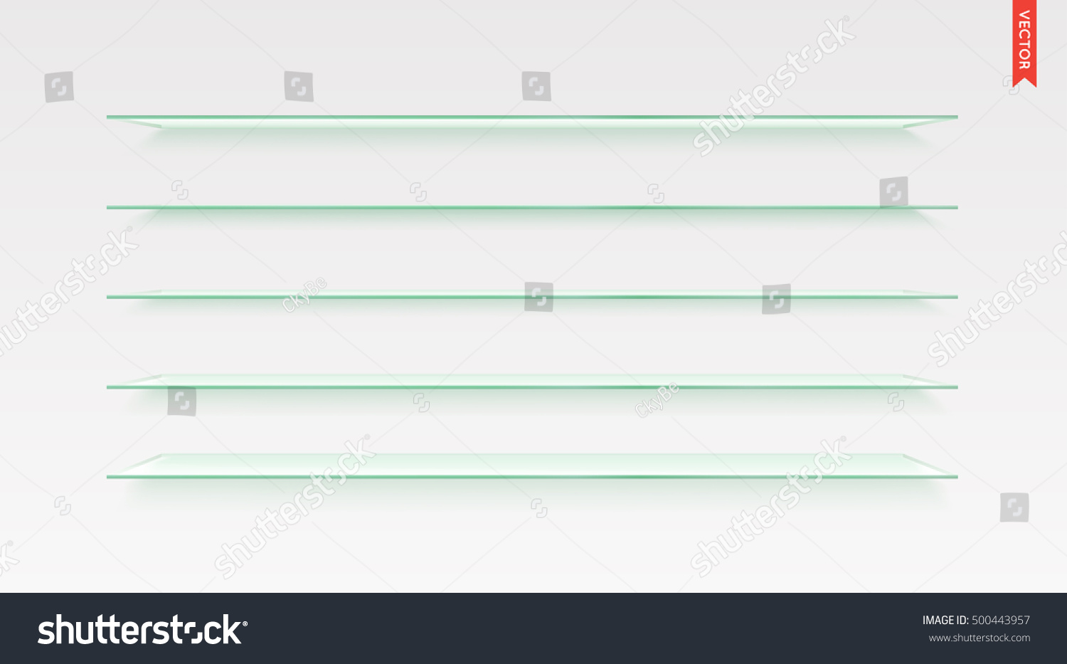 Set of Long Glass Shelves Vector Isolated on the Wall Background