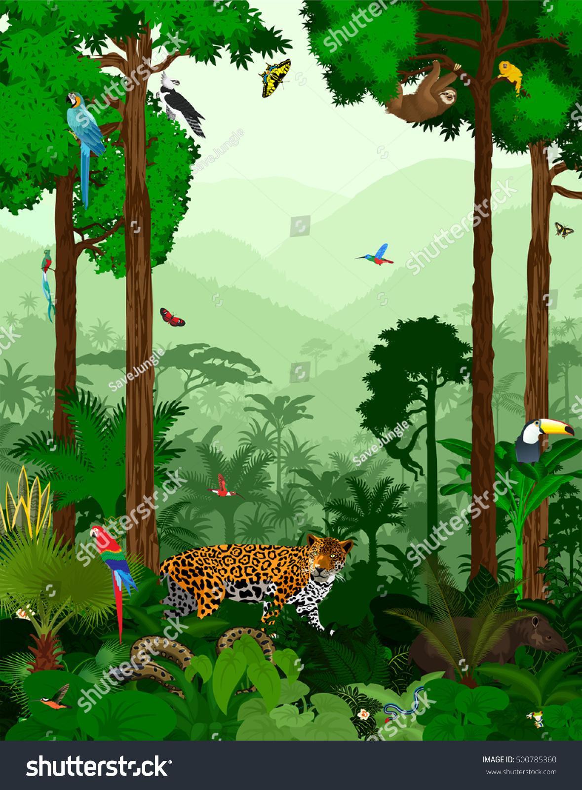 vector jungle rainforest different animals stock vector