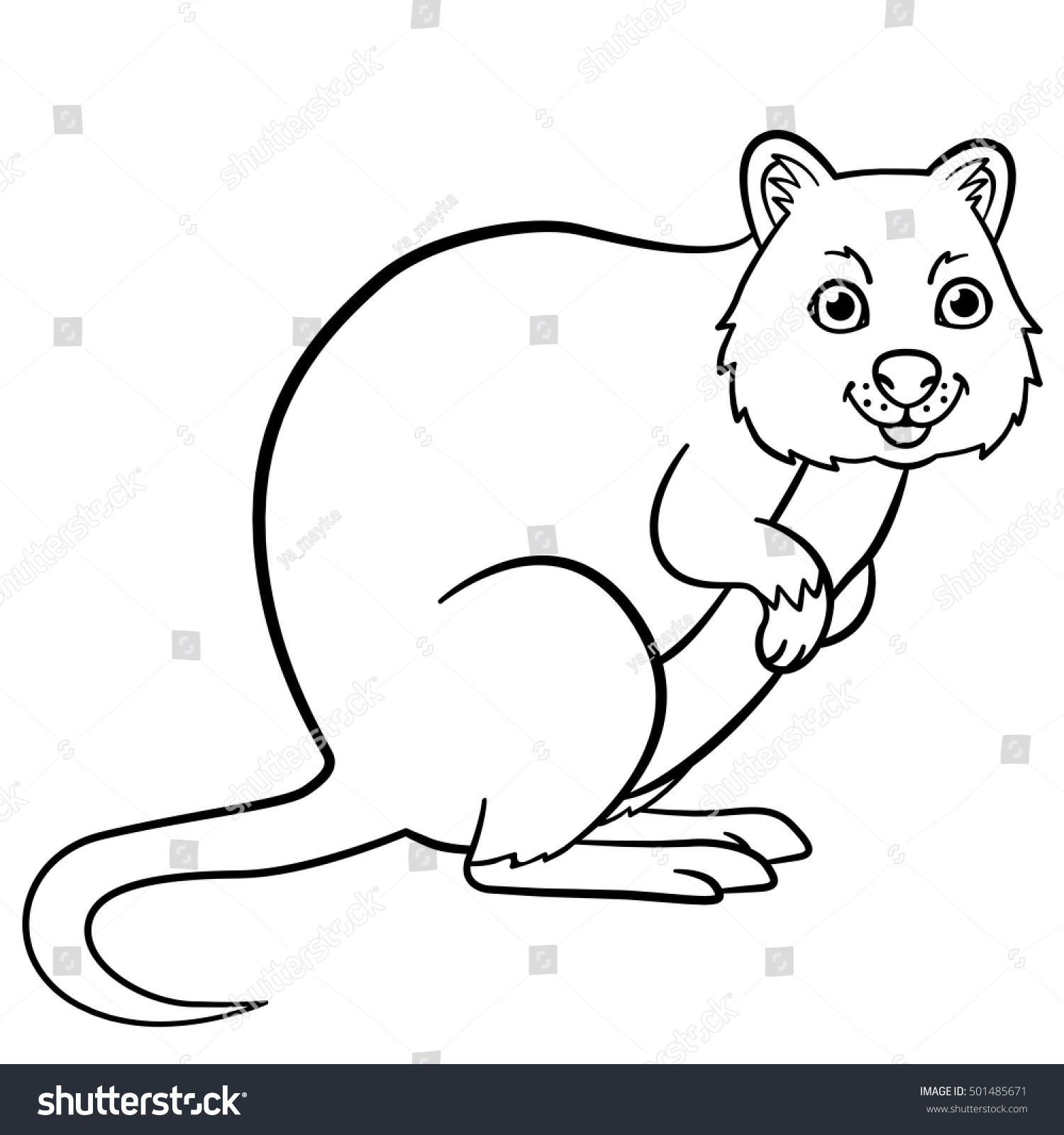Coloring Pages. Little Cute Quokka Stands And Smiles.