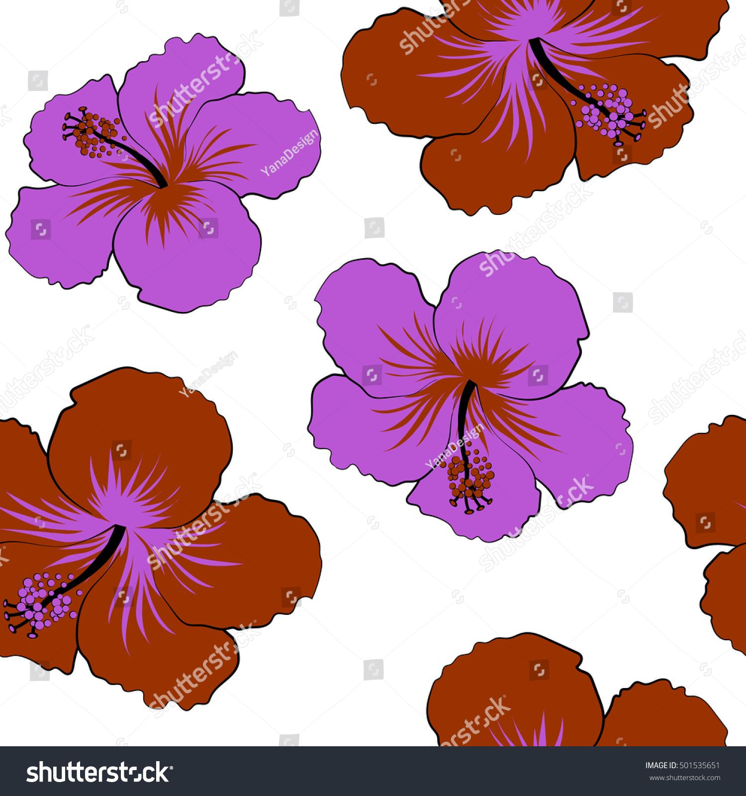 Various Hibiscus Hawaiian Tropical Flowers Brown Stock Vector