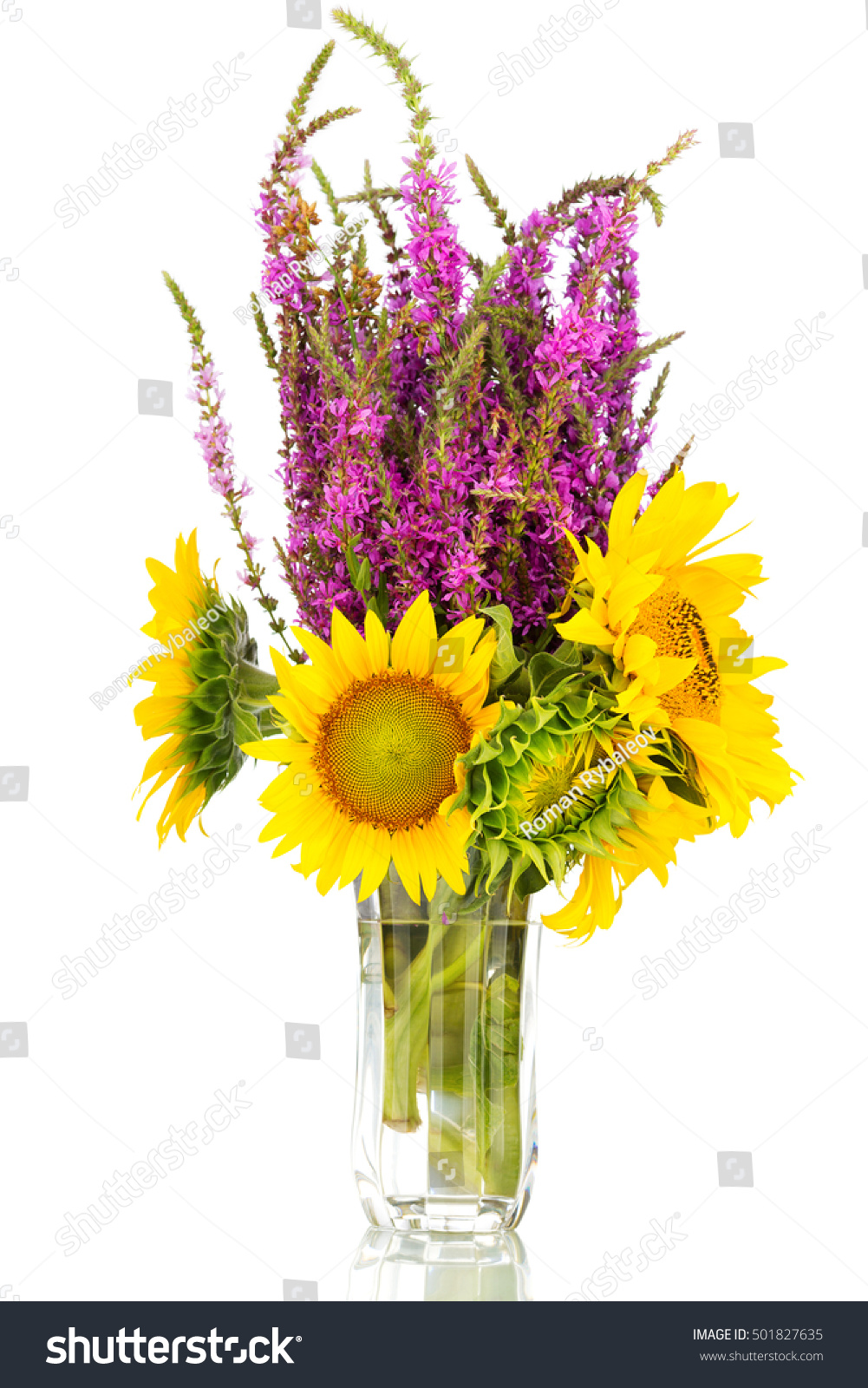 A Big Bunch Of Sunflowers And Purple Wild Sage Flowers In A Vase