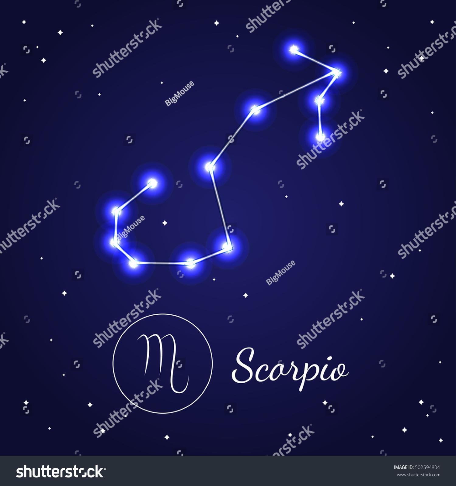 scorpion wallpaper